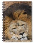 Male African Lion Spiral Notebook