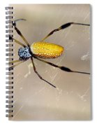 Male And Female Golden Silk Spiders Spiral Notebook