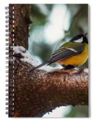 Male Great Tit Spiral Notebook