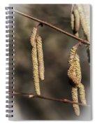 Male Hazel Catkins Spiral Notebook