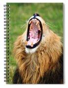Lion Roar Spiral Notebook