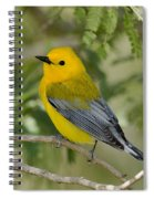Male Prothonotary Warbler Spiral Notebook