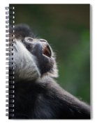 Male White-cheeked Gibbon Spiral Notebook