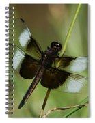 Male Widow Skimmer Dragonfly Spiral Notebook