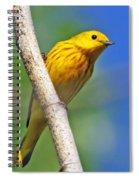 Male Yellow Warbler Spiral Notebook
