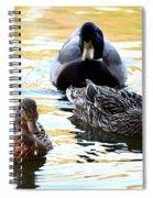 Mallard And Friends 2013 Spiral Notebook
