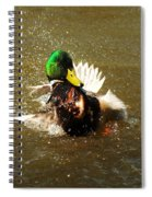 Mallard Bath Time Spiral Notebook
