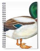 Mallard Duck Spiral Notebook