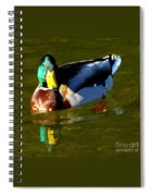 Mallard Male Duck Spiral Notebook