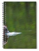 Mallard Splash Down Spiral Notebook