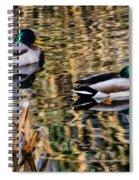 Mallards In The Reeds Spiral Notebook