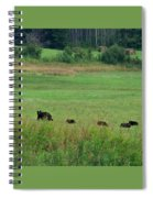Mama Bear And 4 Cubs Spiral Notebook