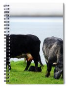 Mama Daddy And Baby Spiral Notebook