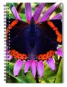 Mammoth Butterfly Spiral Notebook