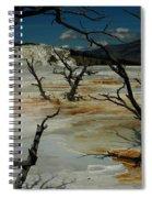 Mammoth Springs Spiral Notebook