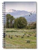 Mancos Colorado Landscape Spiral Notebook