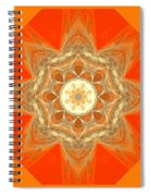 Mandala 014-2 Spiral Notebook