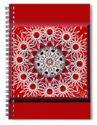 Mandala 014-3 Spiral Notebook