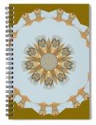 Mandala 014-8 Spiral Notebook