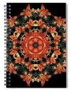 Mandala Daylily Spiral Notebook