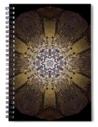 Mandala Sand Dollar At Wells Spiral Notebook