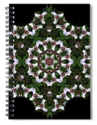 Mandala Trillium Holiday Spiral Notebook