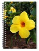 Mandevilla Spiral Notebook