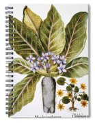 Mandrake And Buttercup Spiral Notebook