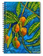 Mangoes Delight Spiral Notebook