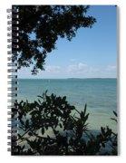 Mangrove Spiral Notebook