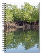 Mangrove Refelections Spiral Notebook