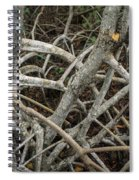 Mangrove Roots 1 Spiral Notebook
