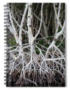 Mangrove Roots Spiral Notebook