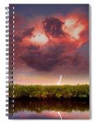 Mangrove Storm Spiral Notebook