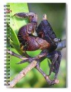 Mangrove Tree Crab Spiral Notebook