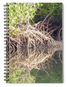 Mangroves In The Gambia Spiral Notebook