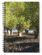 mangroves Madagascar 3 Spiral Notebook