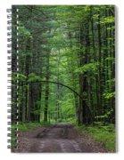 Manistee National Forest Michigan Spiral Notebook