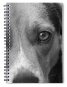Man's Best Friend In Black And White Spiral Notebook