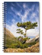 Many Glacier Tree Spiral Notebook
