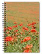 Many Poppies Spiral Notebook