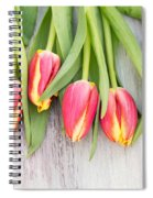 Many Spring Tulip Flowers On White Wood Table Spiral Notebook