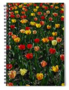 Many Tulips Spiral Notebook