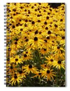 Many Yellow Blooms Spiral Notebook