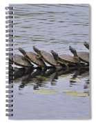 Map Turtles Spiral Notebook