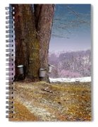 Maple Buckets Spiral Notebook