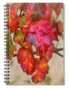 Maple Colors Spiral Notebook