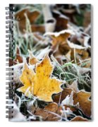 Maple Frost Leaf Art Spiral Notebook