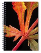 Maple Leaf Detail Spiral Notebook