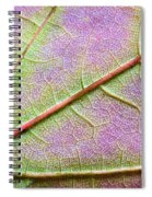Maple Leaf Macro Spiral Notebook